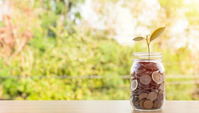 Fundraising plant growing from money in jar