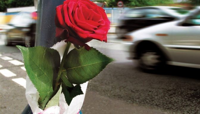 Rose on lampost 1000x750